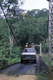 Tourists crossing suspended bridge in rain forest. Royalty Free Stock Photography