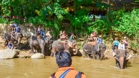 Tourists crossing a Thailand river riding on elephant backs. PAI, THAILAND - NOV 23, 2016: Tourists crossing a Thailand river riding on elephant backs royalty free stock photos