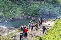 Tourists crowd visit national park in Dam Bri, Vietnam. DAM BRI, VIETNAM - FEBRUARY 19, 2018: Tourists crowd visit national park in Dam Bri, Vietnam stock photos