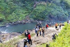 Tourists crowd visit national park in Dam Bri, Vietnam. DAM BRI, VIETNAM - FEBRUARY 19, 2018: Tourists crowd visit national park in Dam Bri, Vietnam royalty free stock photos