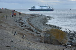 Tourists from cruise ship Via Australis on the Chilean island of Magdalena. Stock Image