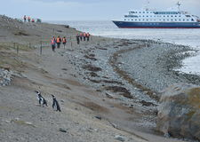 Tourists from cruise ship Via Australis on the Chilean island of Magdalena. Royalty Free Stock Images