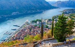 Tourists descend on steps at ancient fortress walls over Kotor and Bay of Kotor, Montenegro. KOTOR, MONTENEGRO - SEPTEMBER 8, 2017: Unknown tourists descend on Stock Photo