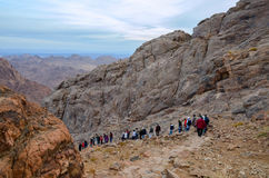 Tourists descend from the top of Mount Moses, Egypt Royalty Free Stock Photo