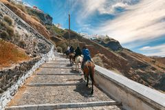 Tourists on donkeys climb the stairs, Fira, Santorini Royalty Free Stock Photography