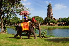 Tourists on an elefant. Ayutthaya Stock Photography