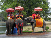 Tourists on an elephant ride tour of the ancient city on April 14, 2012 in Ayutthaya Stock Photos