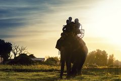 Tourists on an elephant ride tour of the ancient city Royalty Free Stock Images