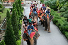 Tourists on elephant ride tour around city on October 11, 2014 in Thailand Royalty Free Stock Photo