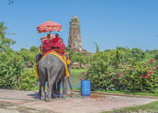 Tourists elephant rides Royalty Free Stock Photography