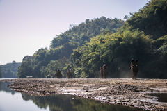 Tourists on elephant trekking in an elephant camp. In province CHIANGRAI,NORTHERN THAILAND Stock Photos