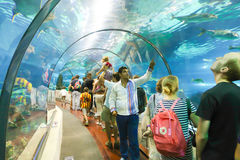 Tourists enjoy Aquarium. Aug. 19 2014, Tourists enjoy Aquarium in Port of Barcelona, Spain Royalty Free Stock Photos
