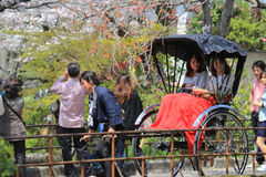 Tourists enjoy cherry blossom at Path of Philosophy in Kyoto Stock Images