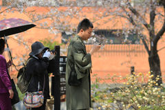 Tourists enjoy cherry blossom at Path of Philosophy in Kyoto Royalty Free Stock Photography