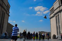 Tourists enjoy one of the rarest and most beautiful views in the city of Brussels Royalty Free Stock Photography