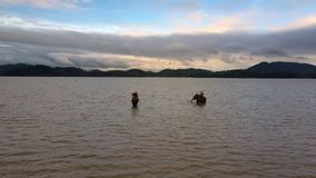 Tourists Enjoy Riding Elephants in Tropical Lake. Panorama European tourists enjoy riding decorated elephants in shallow lake against dark hills under cloudy sky stock footage