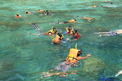 Tourists enjoy with snorkeling in a tropical sea at Phi Phi isla. Krabi,Thailand-March 16,2015:Tourists enjoy with snorkeling in a tropical sea at Phi Phi island Royalty Free Stock Photography