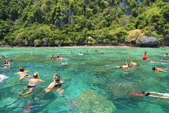 Tourists enjoy with snorkeling in a tropical sea at Phi Phi isla Royalty Free Stock Photography