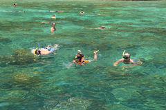 Tourists enjoy with snorkeling in a tropical sea at Phi Phi isla Royalty Free Stock Photos