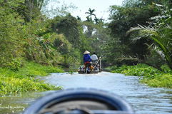 Tourists enjoying Mekong delta cruise with daily trip in a boat Royalty Free Stock Image
