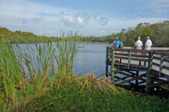 Tourists enjoying view of small lake on viewing platform in Florida. Stock Photo