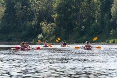 Tourists enjoying water sports, kayaking Stock Photography