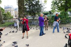 Tourists feeds pigeons - Paris Royalty Free Stock Photography