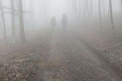 Tourists in the foggy forest Royalty Free Stock Photos
