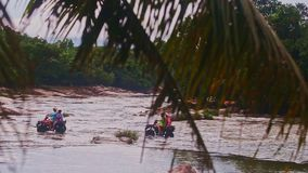 Tourists Ford Flooded River by All Terrain Vehicles in Jungle stock video