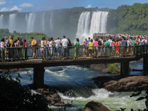 Tourists in Foz do Iguassu Park Stock Photography