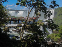Tourists in Foz do Iguassu Park Stock Image