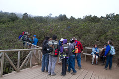 Tourists in Fray Jorge national park Stock Photography