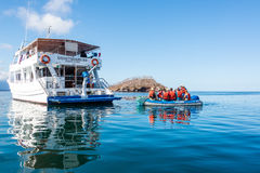 Tourists in Galapagos Stock Photography