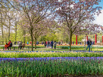 Tourists in gardens of Dutch Keukenhof, Netherlands Stock Images