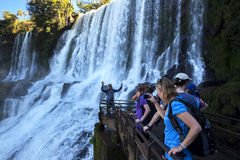 Tourists gather at a waterfall on the Argentinian side of the Iguazu Falls. Royalty Free Stock Images