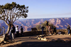 Tourists gaze over the South Rim. GRAND CANYON, ARIZONA - SEP 28 - Tourists gaze over the South Rim, on Sep 28, 2013 just before the government shutdown, at the Royalty Free Stock Photos