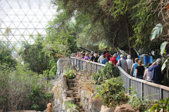 Tourists in giant green house Bioshpere Royalty Free Stock Images