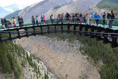 Tourists at the Glacier Skywalk in Jasper National Park. ALBERTA, CANADA - JULY 27 Tourists at the Glacier Skywalk in Jasper National Park on July 27, 2014 The stock photos