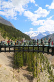 Tourists at the Glacier Skywalk in Jasper National Park,Canada Royalty Free Stock Image