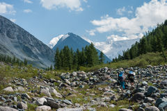 Tourists go on the rocks. Trekking in the Altai Mountains Royalty Free Stock Photography