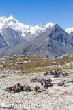Tourists having fun on the Rohtang Pass, Himachal Pradesh, India Royalty Free Stock Photo