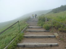 Tourists on a hazy trail in the mountains. Stairs on the trail. Royalty Free Stock Photos
