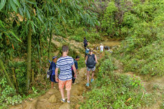 Tourists hiking in Sa Pa, Vietnam Stock Image