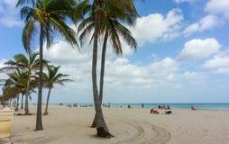 Tourists on Hollywood Beach in Florida. Tourists relaxing under palm trees on Hollywood Beach in Florida royalty free stock photos