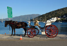 Tourists horse drawn carriage Stock Images