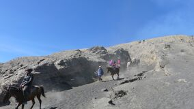 Tourists Horse riding services at Mount Bromo