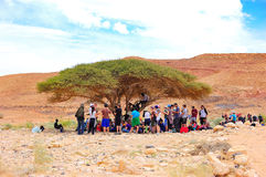 Tourists In Desert Shade, Israel Stock Photos