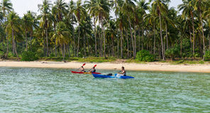 Tourists kayaking on sunny tropical beach with palm trees Stock Photos