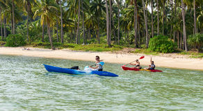 Tourists kayaking on sunny tropical beach with palm trees Stock Photography