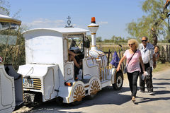 Tourists leave after their visit to the Camargue horses Stock Images